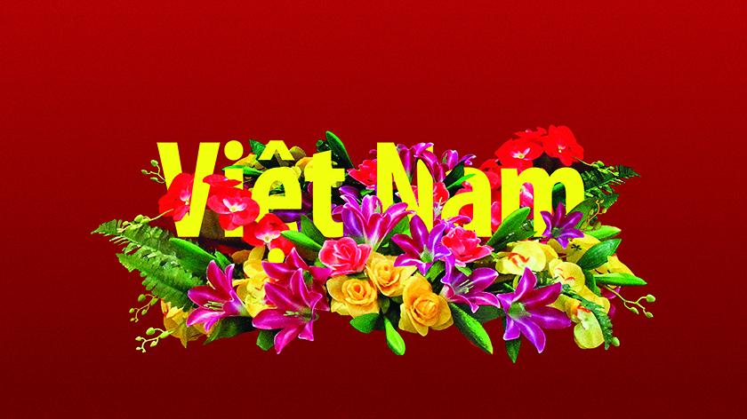 vietnam_matrica1